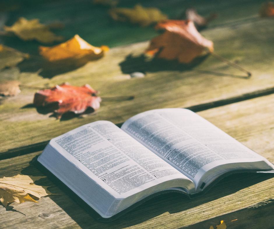 Welk Bijbelverhaal zou jij vertellen?