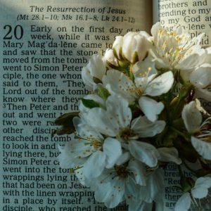 Workshop 'Van podcast tot preek op weg naar Pasen'
